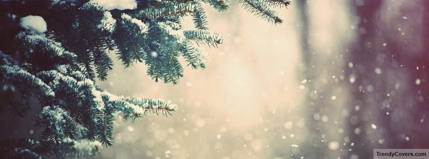 winter_snow_facebook_cover_1355047418